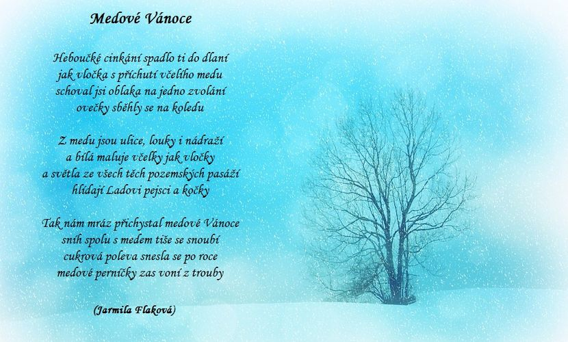 Zasněžená poezie Vánoc – digitimes 1965091c00